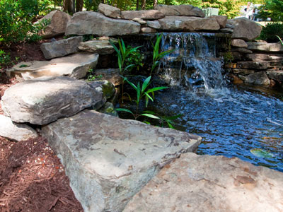 Newport News landscaping